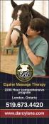 D'AL Equine Massage Therapy